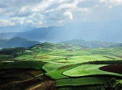 土壤污染防治知识问答——基本知识