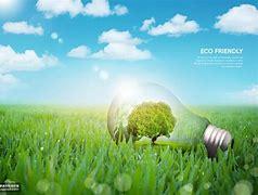如何通过政策搭配助力绿色技术转型?